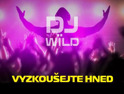 Online automat Dj Wild